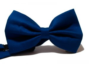 pajarita-azul-electrico